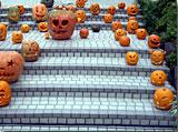 昨日のうちに彫られていたカボチャの作品達 photo by OptioS(edited)