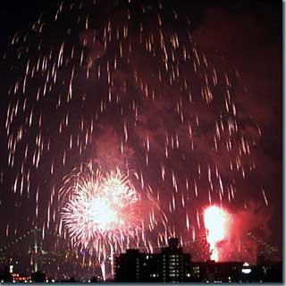 東京湾大華火祭2004・その1 photo by PENTAX OptioS