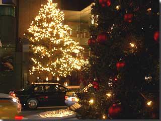 イチイのクリスマスツリー越しに,ミキモトのツリー。 photo by OptioS
