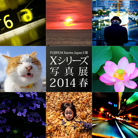 Fujifilmxseriesphotoex2014