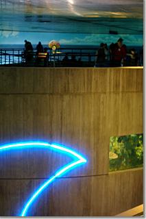National Aquarium in Baltimore13 photo by *istD