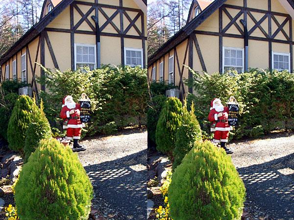 Santa-XmasForestjpg