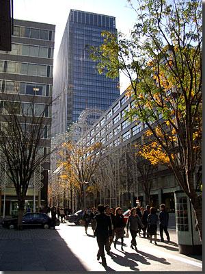 TokyoMillenario(12月17日) photo by Optio S