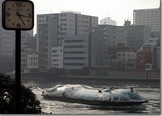 ヒミコ その1 photo by *ist D 焦点距離 45mm F値 F/8 露出時間 1/500秒
