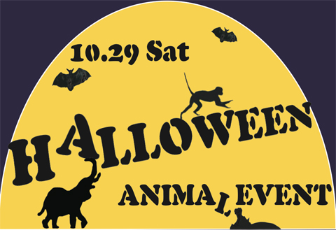 Jwcanimalhalloweenparty